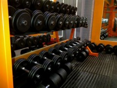Free Weights Rack