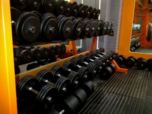 Our Free Weights
